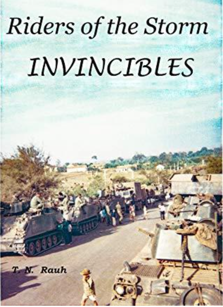 A Novel of the Regiment in Vietnam